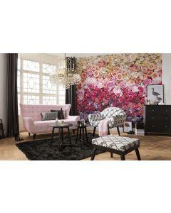 Rosen intensiv 8-teilige Fototapete 368x254cm