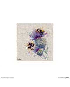 Bienen auf Distel Art Print Jane Bannon 30x30cm
