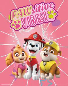 Paw Patrol Pawsitive Vibes Poster 40x50cm