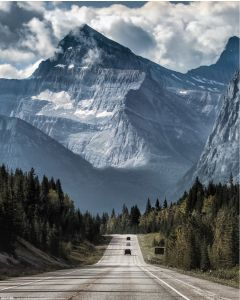 On the Road Poster 40x50cm