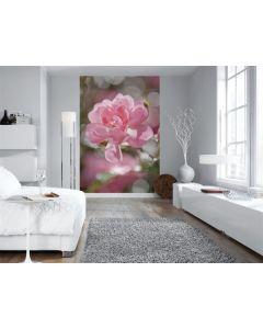 Bouquet - Interieur