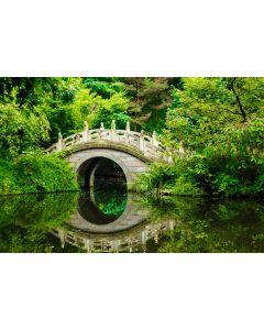 Japanischer Garten 7-teilig Fototapete 350x260cm