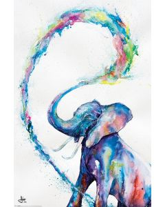 Marc Allante Poster Elefant 61x91.5cm