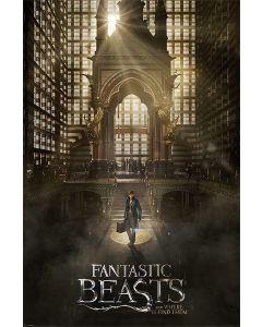 Fantastic Beasts Teaser Poster 61x91.5cm