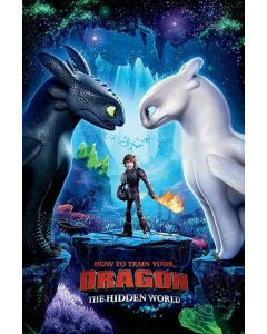 How To Train Your Dragon Poster 61x91.5cm
