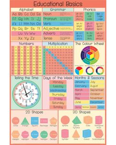 Educational Basics Poster 61x91.5cm