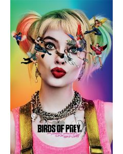 Birds Of Prey Seeing Stars Poster 61x91.5cm