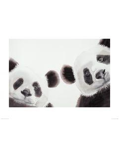 Zwei Große Pandas Art Print Aimee Del Valle 60x80cm