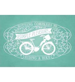 Simple Pleasure Bike