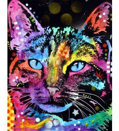 Blaue augen Cat