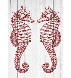 3 Seepferdchen - Rot