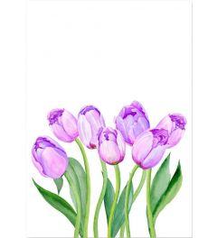 Purperrote Tulpen