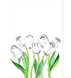 Weißen Tulpen Landschaft