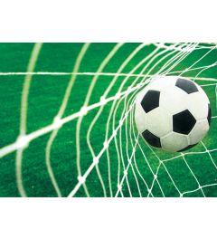 Fußball - Tor