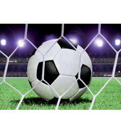 Fußball 4-teilige Fototapete 368x254cm