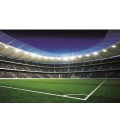 Fußball Stadion 4-teilige Fototapete 368x254cm