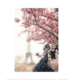 Caroline Mint Paris In Bloom Art Print 30x40cm