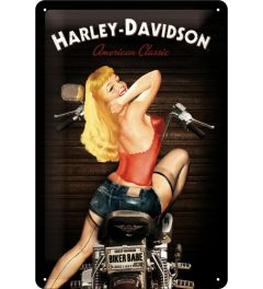 Harley-Davidson - American Classic