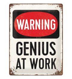Genius at Work Blechschilder 30x40cm