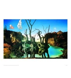 Dali Reflections Of Elephants Kunstdrucke 60x80cm