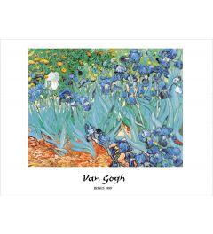 Van Gogh Irises Kunstdrucke 60x80cm