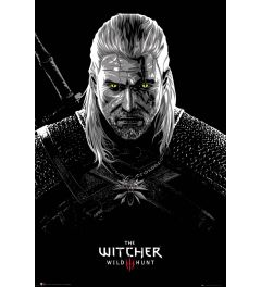 The Witcher Toxicity Poisoning 61x91.5cm