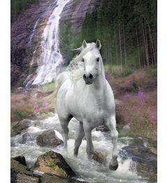 Paard voor Waterval - Bob Langrish