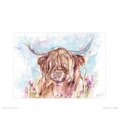 Schottisches Hochlandrind Art Print Jennifer Rose 30x40cm