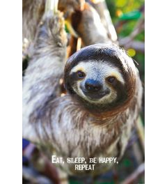 Eat, Sleep, Be Happy, Repeat Poster 61x91.5cm