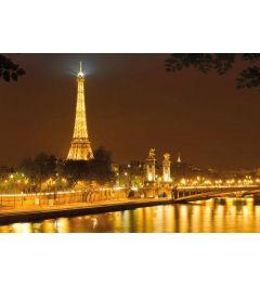 Eiffeltoren bij Nacht