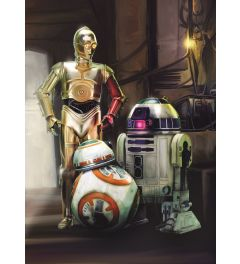 Star Wars Droids Three 4-delig Fotobehang 184x254cm