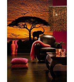 Zonsondergang in Afrika - Interieur