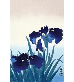 Ohara Koson Iris Flowers Poster 61x91.5cm