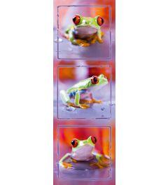 Frosch mit Rote Augen