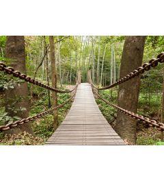 Hängebrücke 7-teilige Fototapete 350x260cm