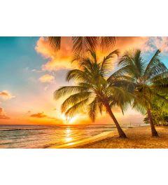 Barbados Palmenstrand