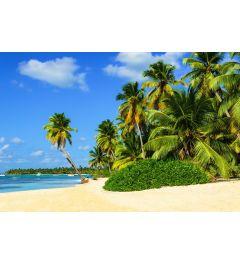 Exotischer Palmenstrand 7-teilige Fototapete 350x260cm