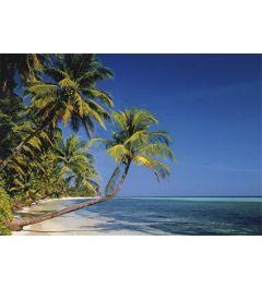 Strand in de Stille Zuidzee