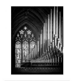Organ Black & White Art Print