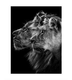 Löwe Und Löwin Art Print