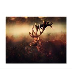 Hirsch Im Nebel Art Print
