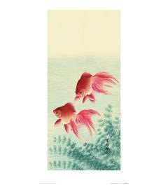 Ohara Koson Two Veil Goldfish Art Print 30x60cm