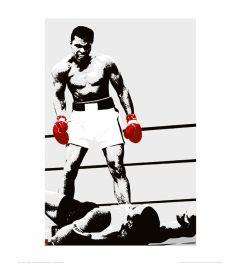 Muhammad Ali Gloves Art Print 40x50cm