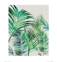 Summer Thornton Palm Leaves Art Print 40x50cm