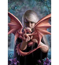 Anne Stokes Dragonkin Poster 61x91.5cm