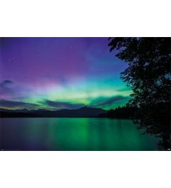 BBC Earth Northern Lights Poster 61x91.5cm