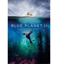 Blue Planet 2 Take A Deep Breath Poster 61x91.5cm