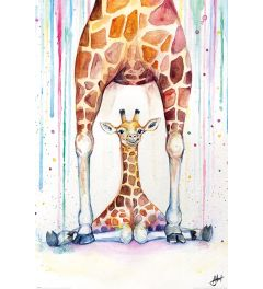Marc Allante Wunderschöne Giraffen Poster 61x91.5cm