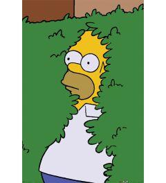 The Simpsons Homer Bush Poster 61x91.5cm