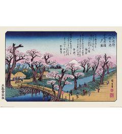 Hiroshige Mount Fuji Koganei-brug Poster 61x91.5cm